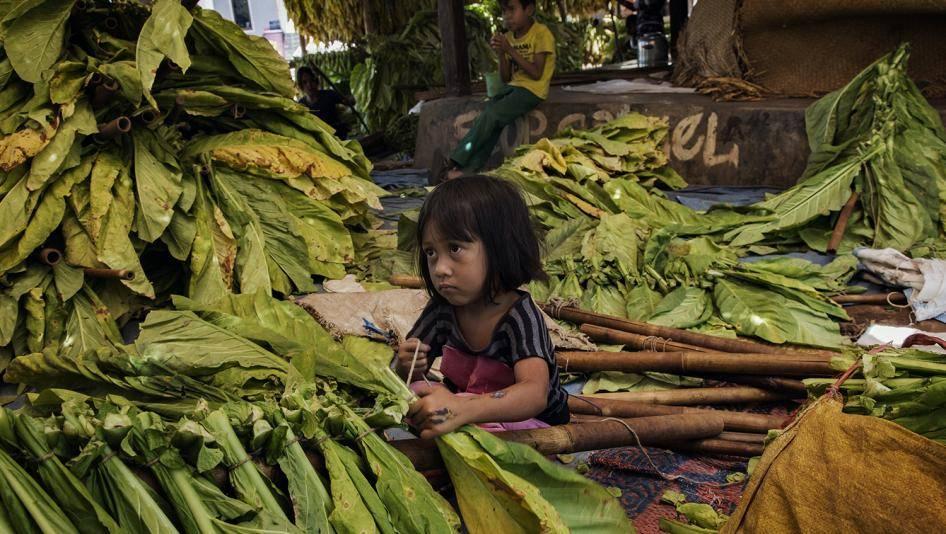 droits-humains-tabac-culture-exploitation-enfants