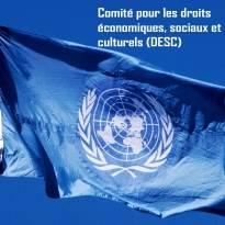 droits-economiques-sociaux-culturels-ingerence-industrie-tabac-DESC-ASH