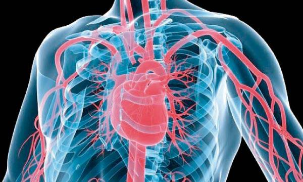maladie-cardiaque-arrêt-tabac