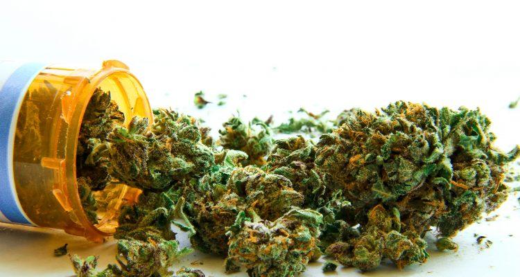 industrie-tabac-cannabis-cbd-pharma